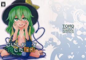 Koishi ga Hitomi o Tojita Wake