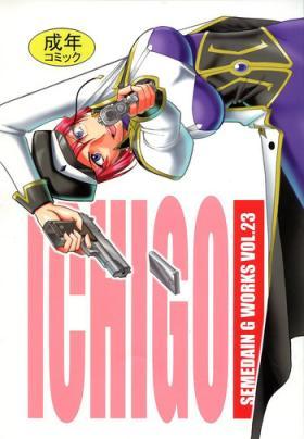 SEMEDAIN G WORKS Vol. 23 - ICHIGO