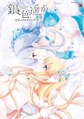 Giniro, Haruka Visual Fanbook