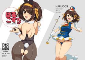 Harucos +5