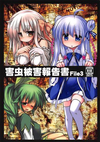 Gaichuu Higai Houkokusho File 3