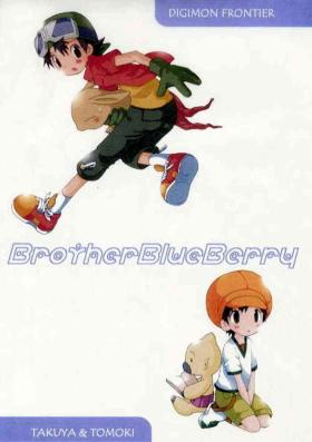 Brother Blueberry