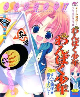 Shounen Ai No Bigaku 17 The Wanpaku Shounen