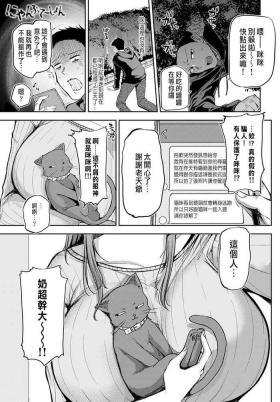 にゃんぷて~しょん