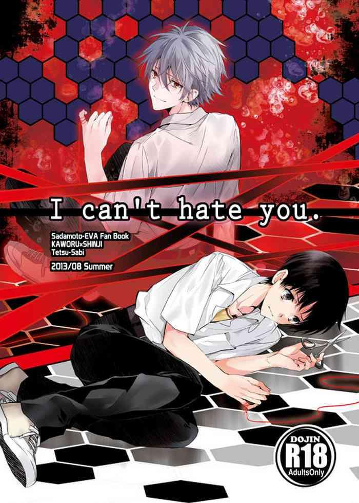 I Can't Hate You