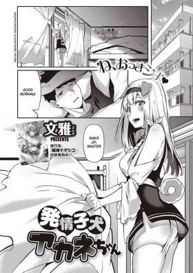 Hatsujou Koinu Akane-chan