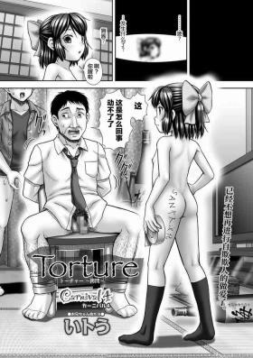Carnival 4 Torture