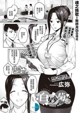 Shirotaegiku