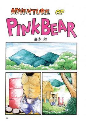 Adventure of Pink Bear