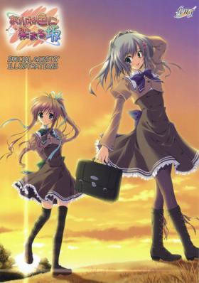 Akaneiro ni Somaru Saka SPECIAL GUESTS' ILLUSTRATIONS
