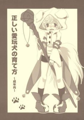 Tadashii Aigan-ken no Sodate Kata